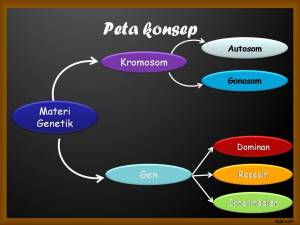 Peta Konsep Materi Genetik